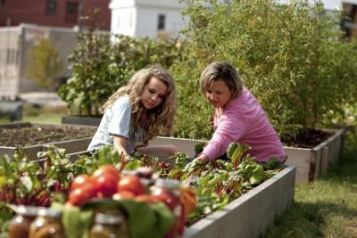 Gardening: Caucasian Mother Daughter Picking Vegetables Waist Up